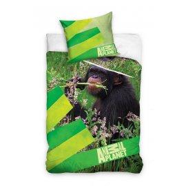 Dětské povlečení Animal Planet - Šimpanz v přírodě