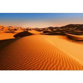 Fototapety na zeď Desert Landscape F976