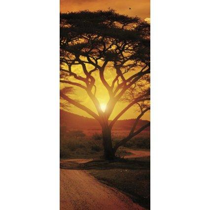 Fototapeta na dveře Africa Sunset