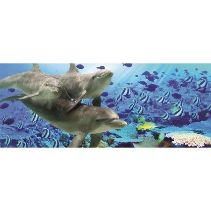 Fototapeta panoramatická vliesová Delfíni