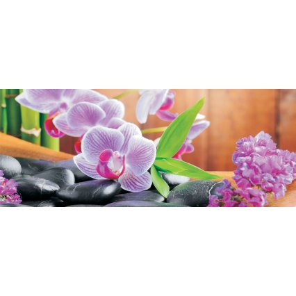 Fototapeta panoramatická vliesová Orchidej 2