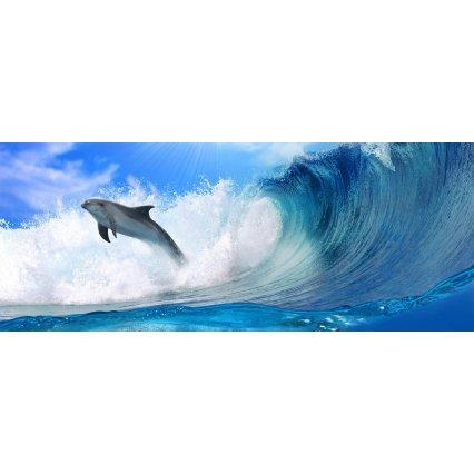 Fototapeta panoramatická vliesová Dolphins