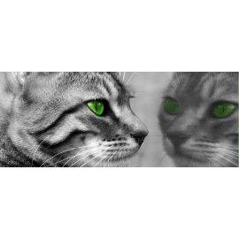 Fototapeta panoramatická vliesová Kočka