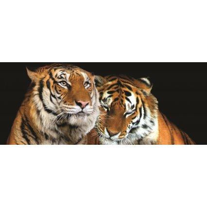 Fototapeta panoramatická vliesová Tygři