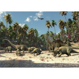Fototapeta Dinosauři