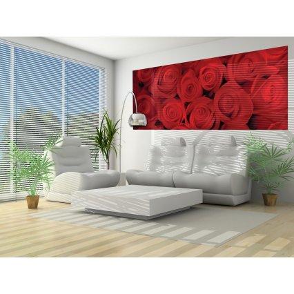 Fototapeta panoramatická vliesová Červené růže