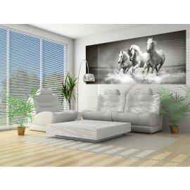 Fototapeta panoramatická vliesová Cválající koně