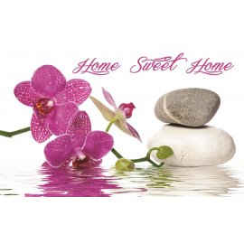 Fototapeta Orchid spa