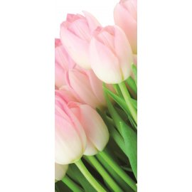 Fototapeta na dveře Bouquet of tulips