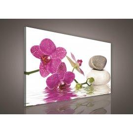 Obraz na plátně Lázeňské kameny s orchidejí 100 x 75 cm
